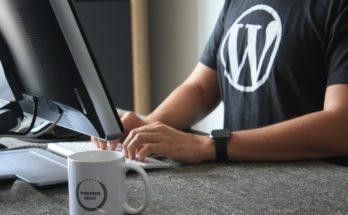 WordPress Developer At Work
